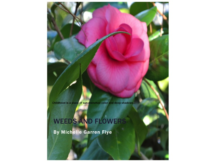What I Did in My Free Time Yesterday: Announcing Weeds and Flowers on Kindle!