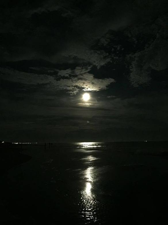 Last night was the Supermoon. This is how it looked from the North Carolina beach.